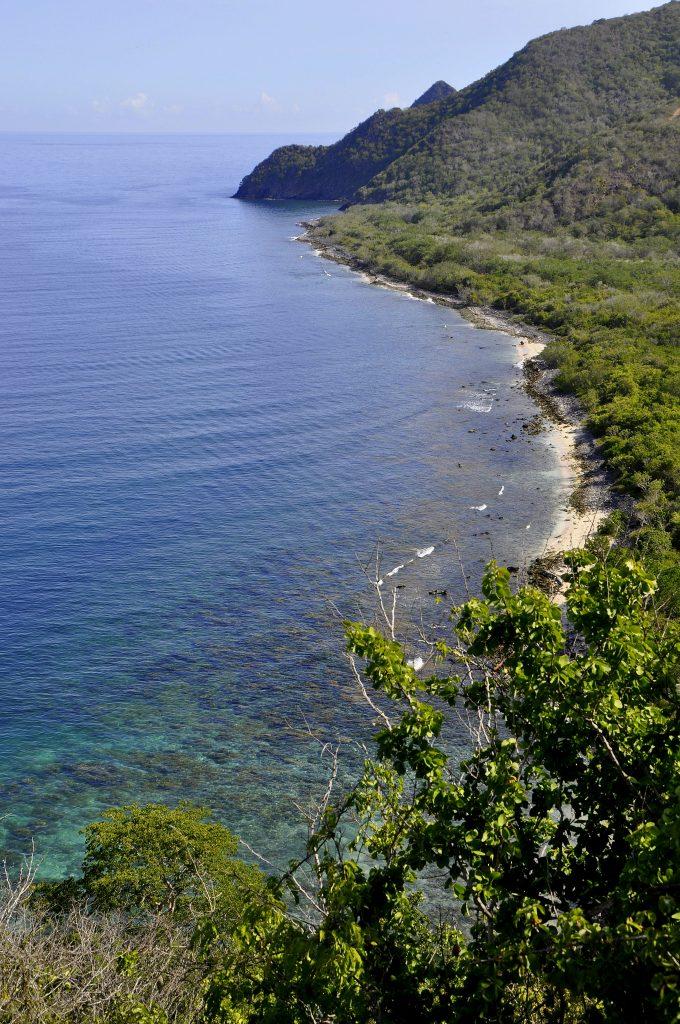 Bahia Patanemo